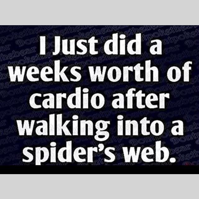 A week's worth of cardio