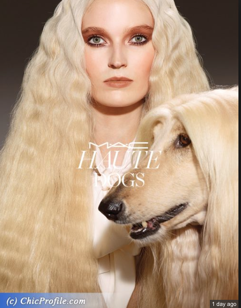 http://chicprofile.com/mac-haute-dogs-collection-fall-2015 MAC photo